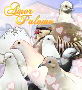 palomo1